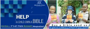 donate a bible a bibless child